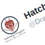 @HatchingDragons